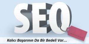 seo-hizmeti